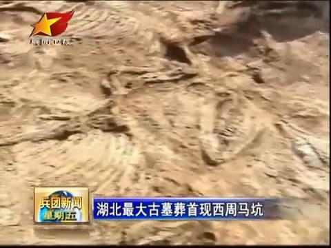 揭秘古墓 湖北最大古墓葬首现西周马坑