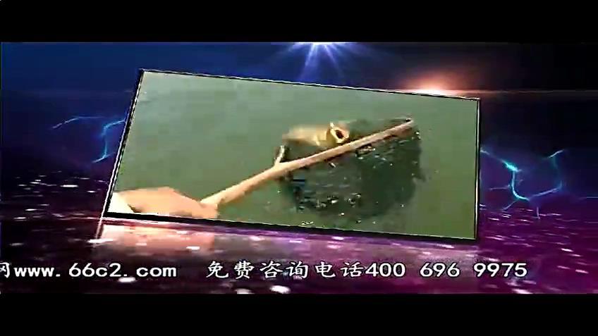 钓鱼调漂找底视频 钓鱼视频黑坑钓鲤鱼调漂