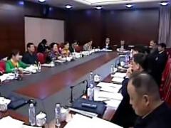 """江西代表团分组审议""""两高""""工作报告"""