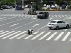 吉安井冈山:女子穿高跟鞋开车